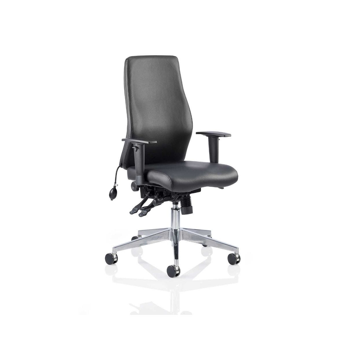 Onyx Leather Posture Office Chair, Black