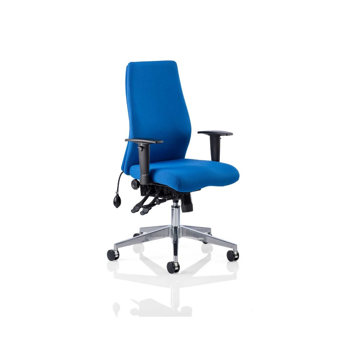 Onyx Posture Office Chair, Blue