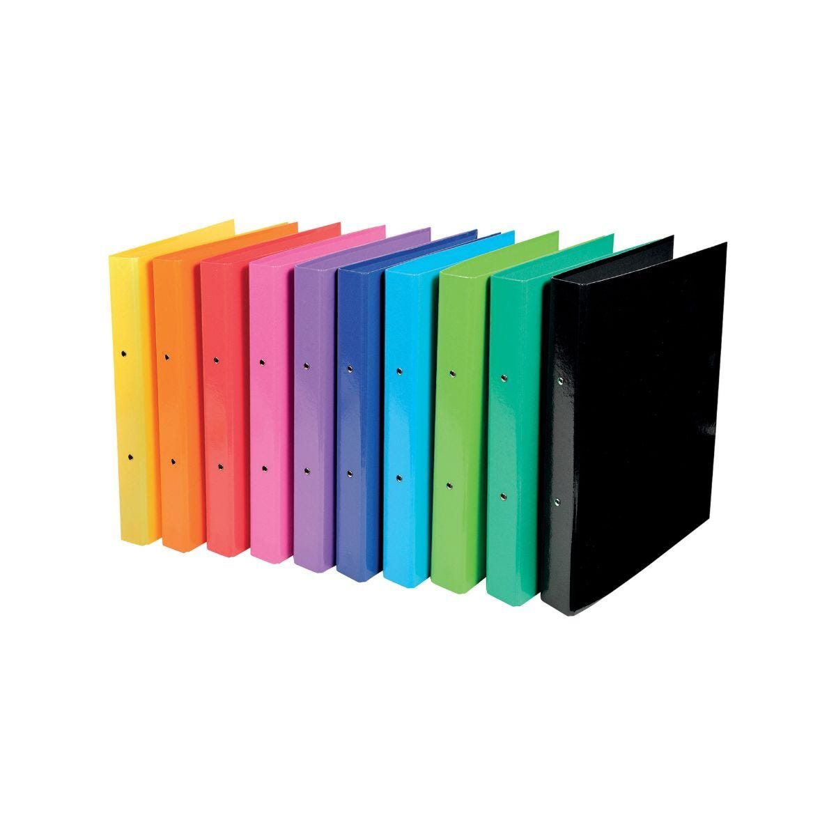 Iderama Ring Binder A4 Pack of 10 Assorted
