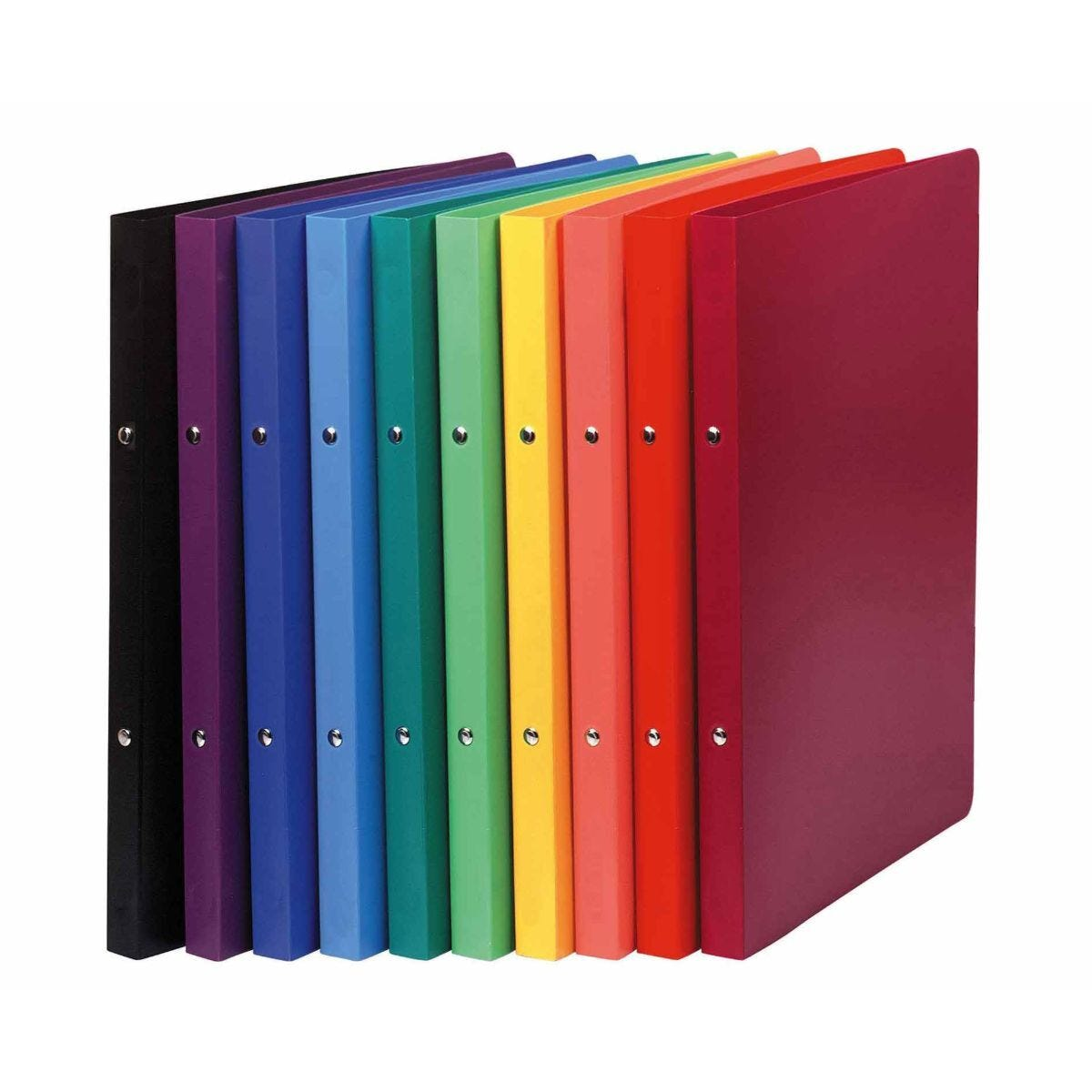 Exacompta Opaque Flexi Cover Ring Binder A4 Pack of 20 Assorted