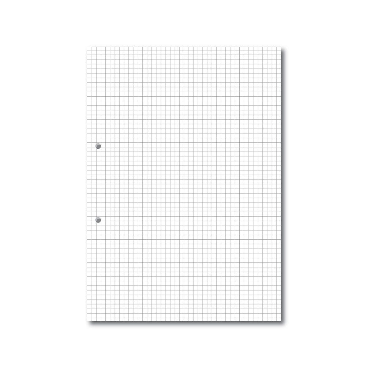 A4 Loose Leaf Paper 5mm Square Ruled 2 Hole Punched