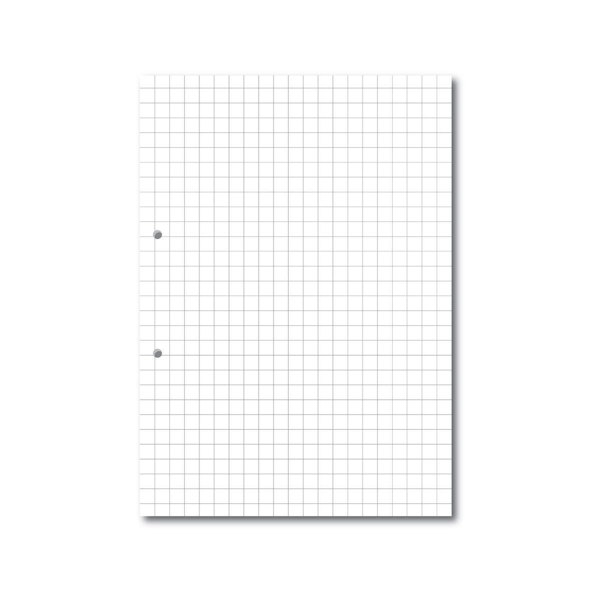 A4 Loose Leaf Paper 10mm Square Ruled 2 Hole Punched