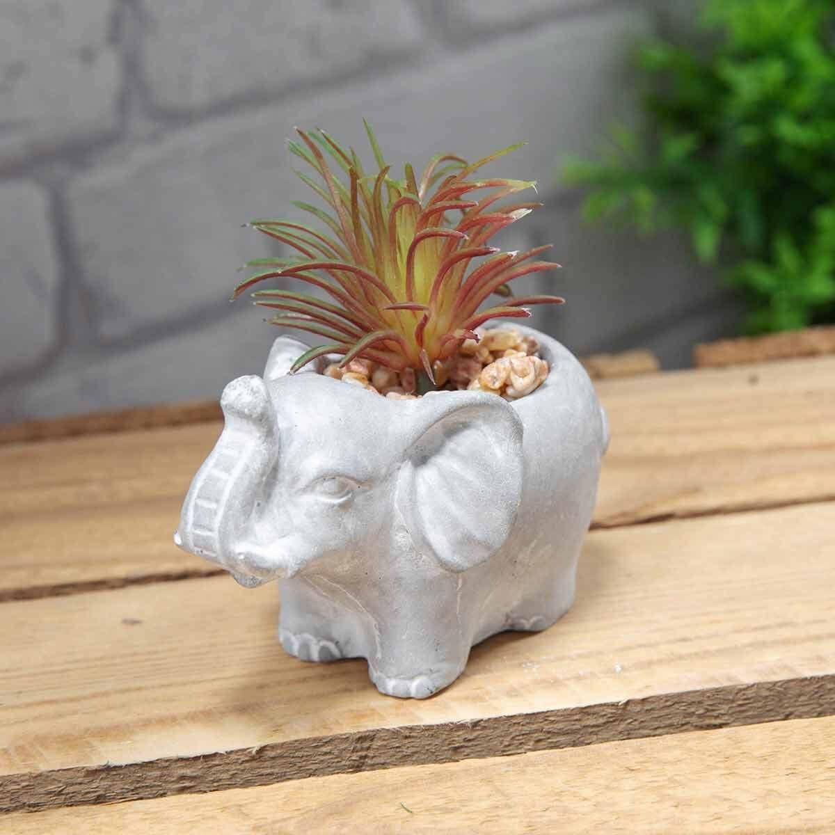 Decorative Elephant Potted Succulents