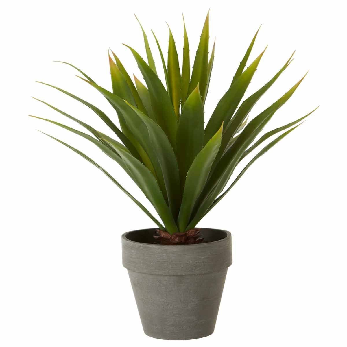 Interiors by PH Faux Agave in Cement Pot