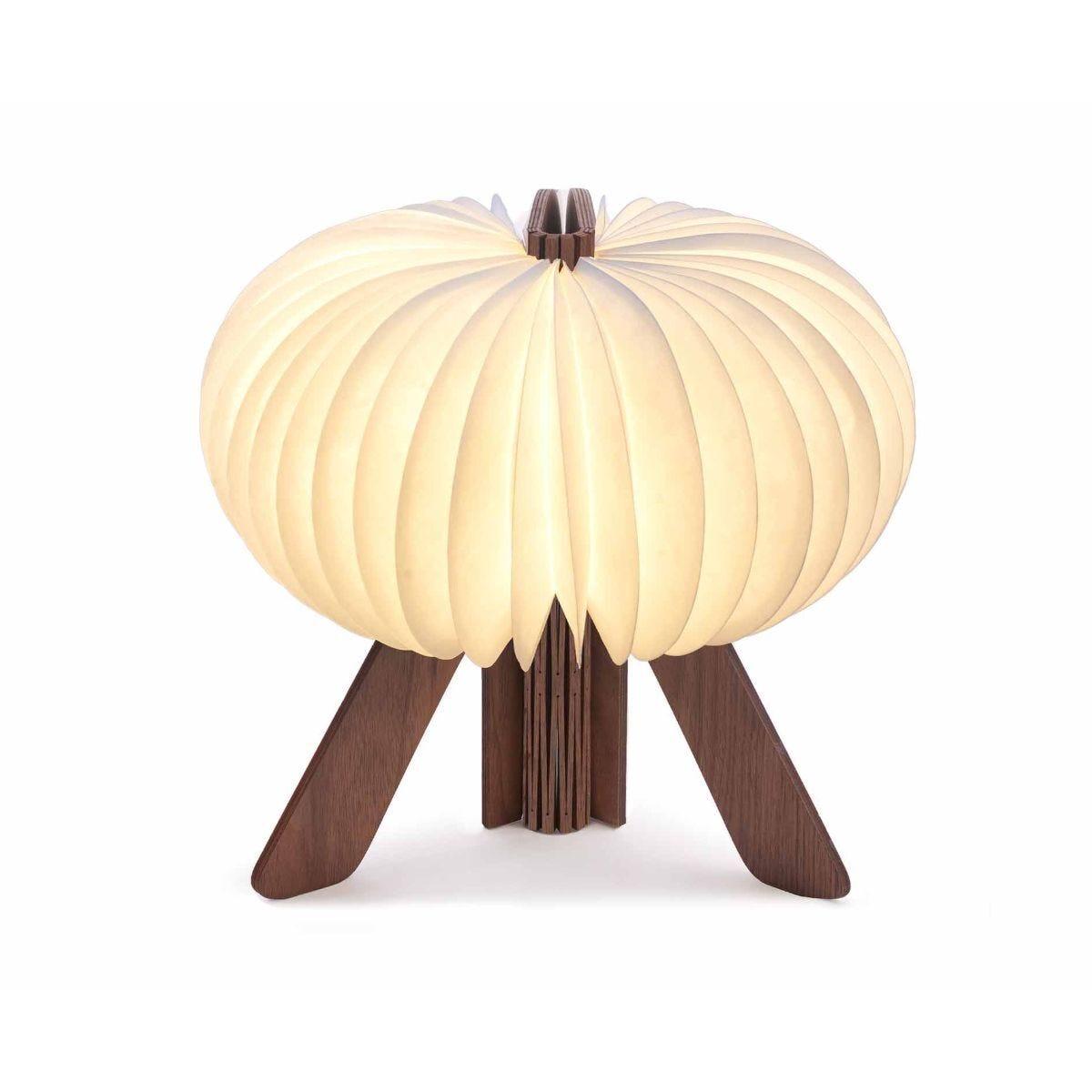 Gingko R-Space Desk Lamp