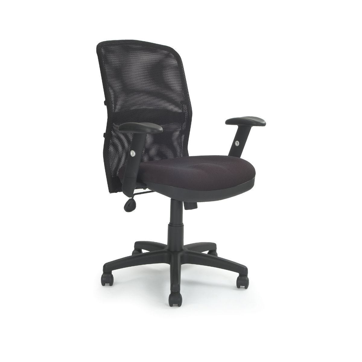 Mesh Back Armchair with Adjustable Lumbar Support