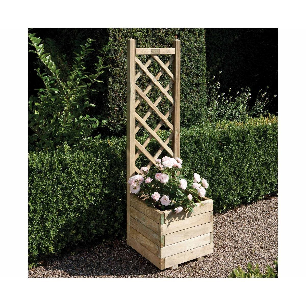 Rowlinson Square Lattice Planter