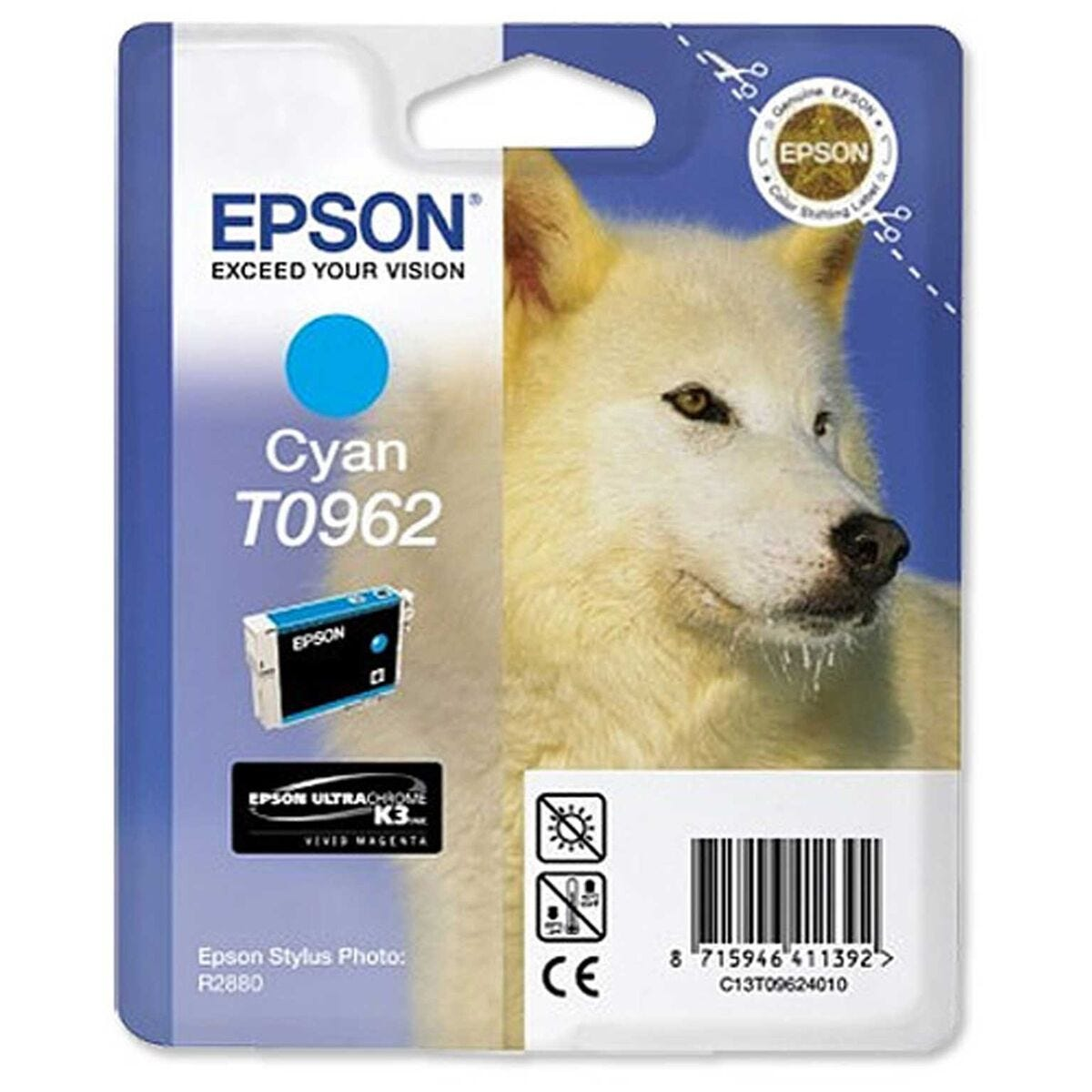 Epson T096 Stylus Cartridge
