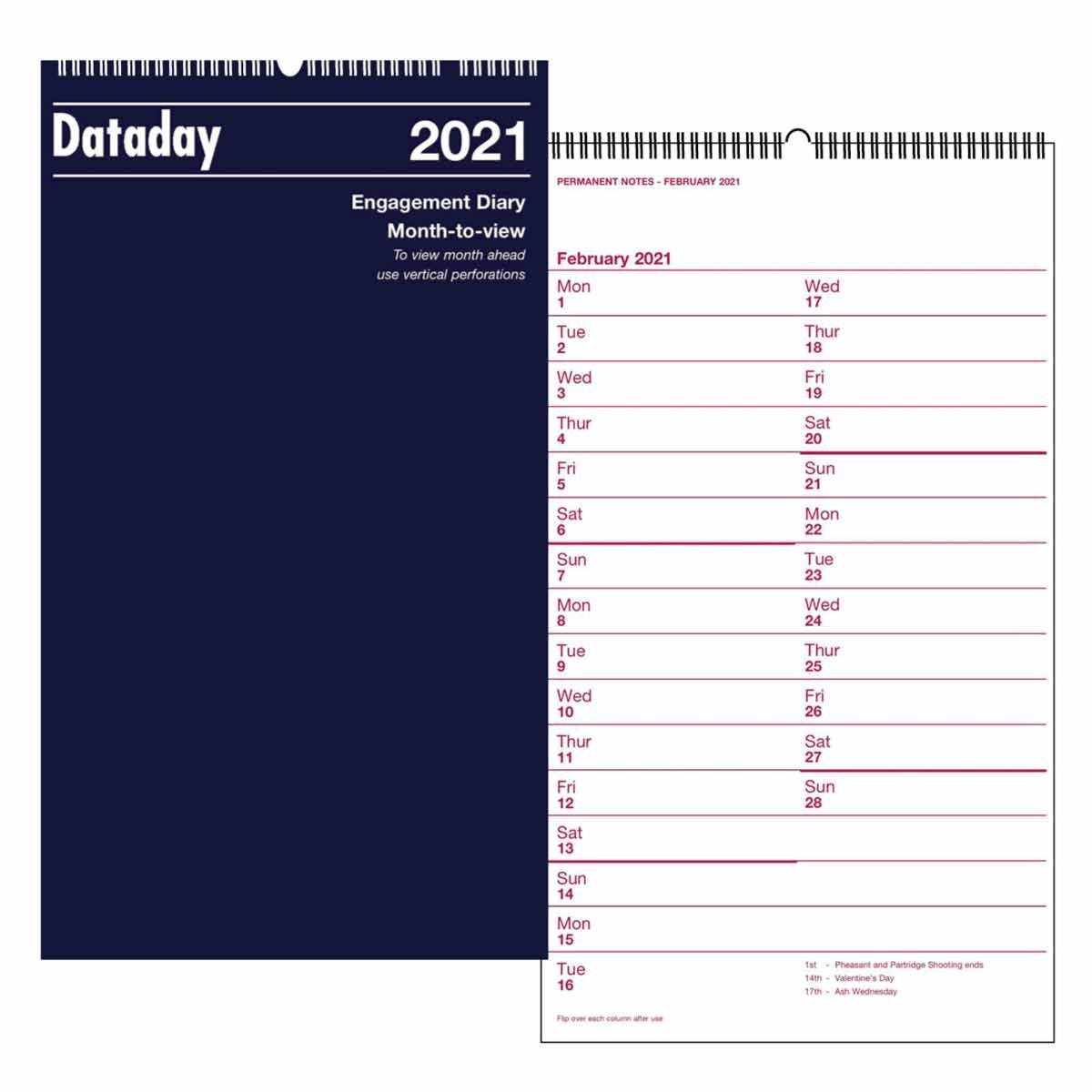 Dataday Month to View Wall Calendar 2021