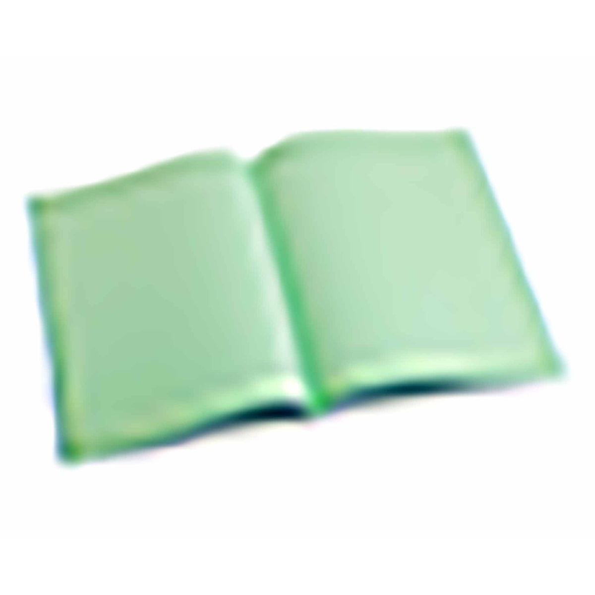 Tinted Exercise Books Squared A4 10mm Leaf Green
