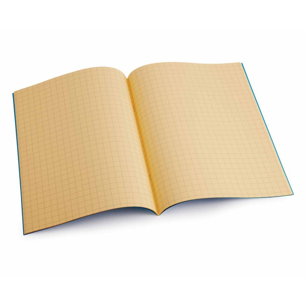 Tinted Exercise Books Squared A4 10mm Orange
