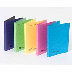 Exacompta Europa Ring Binder A4 2 Ring 16mm Pack of 10 Assorted