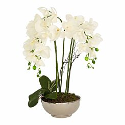 Interiors by PH Faux Orchid Plant in Ceramic Bowl