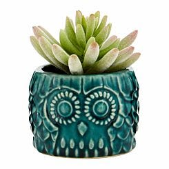 Interiors by PH Faux Succulent in Small Owl Pot