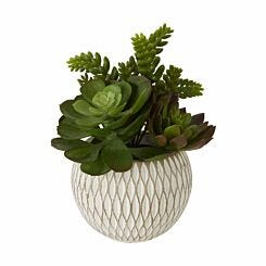 Interiors by PH Faux Mixed Succulents in Ceramic Pot