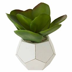 Interiors by PH Faux Mixed Succulents in Faceted Pot