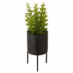 Interiors by PH Faux Thyme in Ceramic Pot
