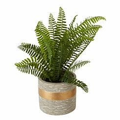 Interiors by PH Faux Boston Fern in Cement Pot