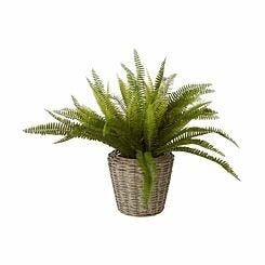 Interiors by PH Faux Boston Fern in Rattan Basket