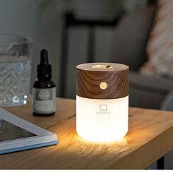 Gingko Smart Diffuser Lamp