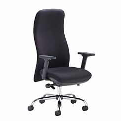 TC Office Ergonomic Posture Chair