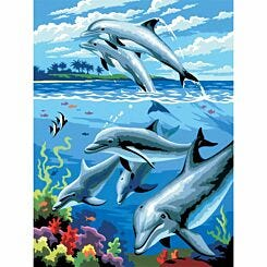 Junior Painting By Numbers Dophins