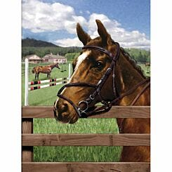 Junior Painting By Numbers Equine Paddock