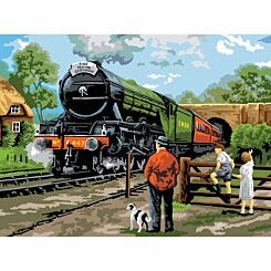 Adult Painting By Numbers Steam Train
