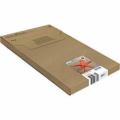 Epson Starfish 603 EasyMail Original Ink Cartridge Pack of 3