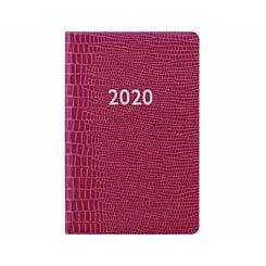 Letts Iguana Diary Week to View Mini 2020