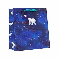 Star Gazer Christmas Gift Bag Large